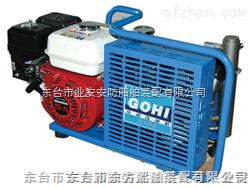 呼吸器充气泵认证   呼吸器充气泵规格参数