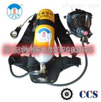 RHZK(5L及6L)/30MPA正压式空气呼吸器