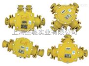 BHD2-200/1140,BHD2-400/1140矿用低压电缆接线盒