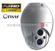 網絡百萬高清極寒紅外球型攝像機