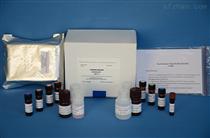 猪白介素17(IL17)ELISA试剂盒