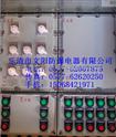 文阳防爆配电箱生产厂家,乐清市防爆配电箱生产厂家