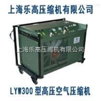 高压空气泵【联系方式021-65462984】