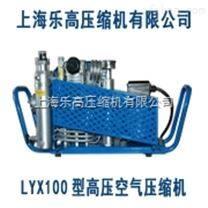高压空气泵【021-65462984】