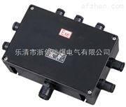 eJX51-20/4防爆接线箱