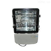 NTC9230内场强光灯、隧道灯、通路灯、金卤灯