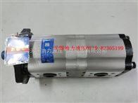 长源双联泵CBTLFA-E418/E410-AFX