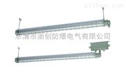 2×14W防爆防腐荧光灯价格