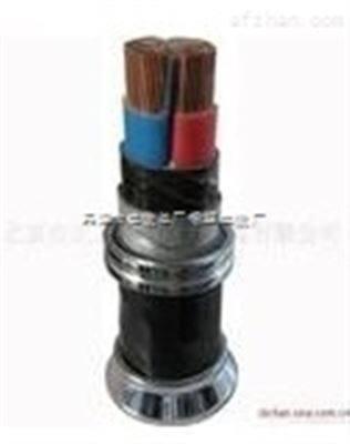 WDZ-YJV低烟无卤电缆WDZ-YJV价格