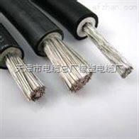 计算机DJFFP高温电缆(天津)