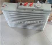 CBDR-CBDR系列防爆电热油汀