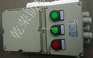 BZC8060【河北供华荣技术力量 BZC8060系列防爆防腐操作柱】