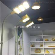 rlb97-化工厂LED100W防爆灯-化工厂LED防爆高杆路灯头