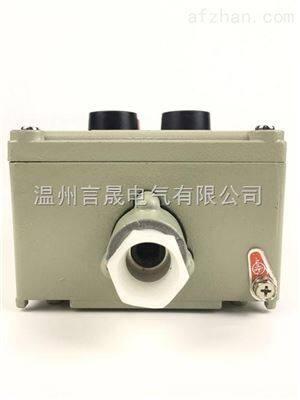 防爆操作柱 2钮2灯挂式按钮箱