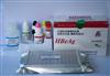 雞白介素17(IL-17)ELISA試劑盒