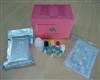 兔子Ⅰ型胶原(Col Ⅰ)ELISA试剂盒