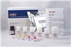 兔子凝血因子Ⅱ(FⅡ)ELISA试剂盒
