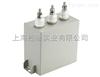 ACMJ0.69-□-1系列滤波电容器