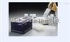 96T/48T上海KS人硫酸微信女生霸气冷酷好听角质素 ELISA试剂盒