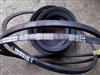 SPZ875LW供应进口SPZ875LW工业皮带耐高温三角带供应皮带