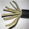 ZR-DJYPVP10*2*1.5阻燃计算机电缆价格